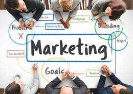 Looking for Marketing executive