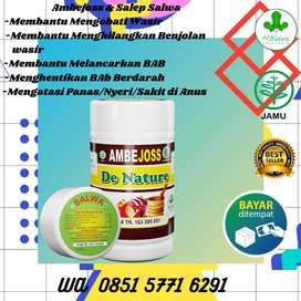 Obat Herbal Ambeien Menahun