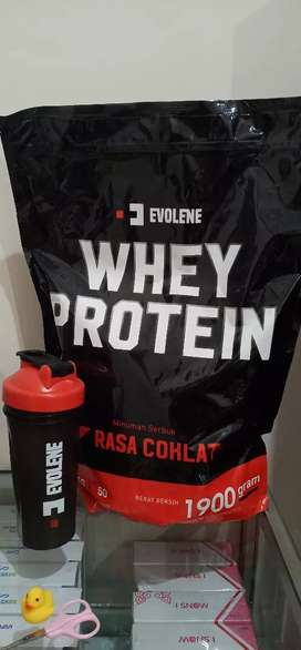Suplemen Fitnes whey Protein