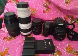 CANON 5D MARK¡¡