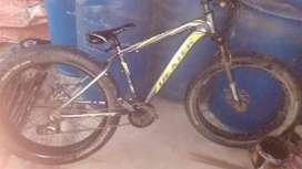 Dexter fat bike