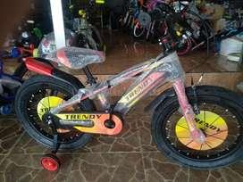 sepeda anak trendy