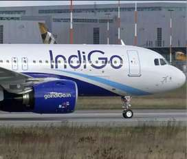 Urgent Hiring For Indigo Airlines As A Cabin & Ground Job