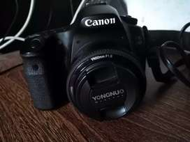60D Canon with 50mm yongnuo