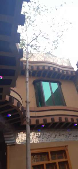 Flate for rent gulbahar no 4