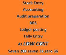 GST Filing, BRS, Accounting, Stock checking, Tally entry