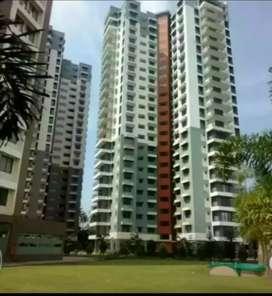 3 bhk 1850 sqft flatt for rent at aluva area