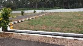 DTCP Approved Site NH Near Othakalmandbam
