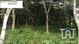 PLOT FOR SALE IN NOORANADU