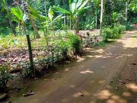 Tanah Luas 140 m2 di Langgongsari Barat Purwokerto