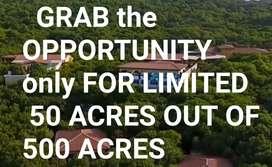 121Sqyds,One Gunta,Farming land for Sale @ Sadasivpet