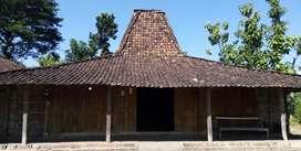 Rumah Joglo Jati Kuno Gagah Mantap #Not limasan