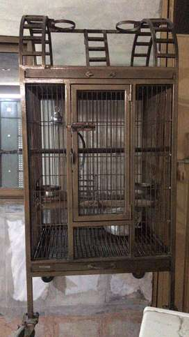 Indoor cage for raw ,grey and maccow parrot