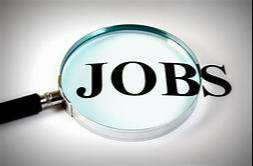 Assistant Sales Manager Ranchi