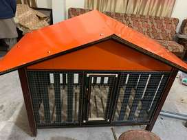 New Hen  Cage with 4 Hen