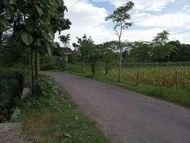 Tanah Standar Perumahan Legalitas SHM 10 Menit Bandara Adisucipto
