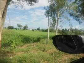 7 acre for farm house cutting