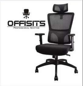 Offisits High Back Executive Ergonomic Office Chair