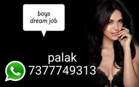 Part time jobs for boys good income apply soon