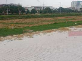 200sqyd east facing Plot for sale in Tdi City Mohali