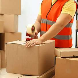 Warehouse picking job available in poochiathipedu