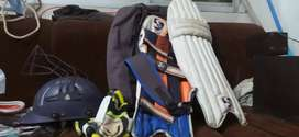 Sg cricket kit with a English Willow cricket bat