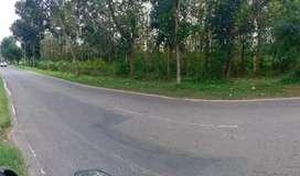 Jual tanah SHM dekat SD N 2 Gedong karanganyar Jawa Tengah tepi jalan