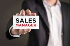 We are hiring sales manger/sales executive
