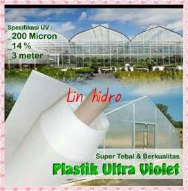 PLASTIK UV GREEN HOUSE HIDROPONIK