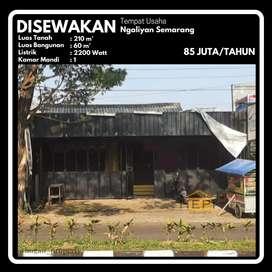 Tempat Usaha Ex-Tempat Makan Outdoor Ngaliyan Semarang