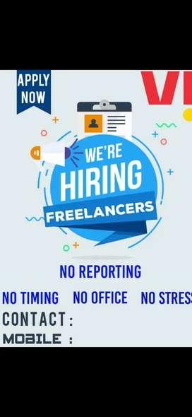 V! Freelancer