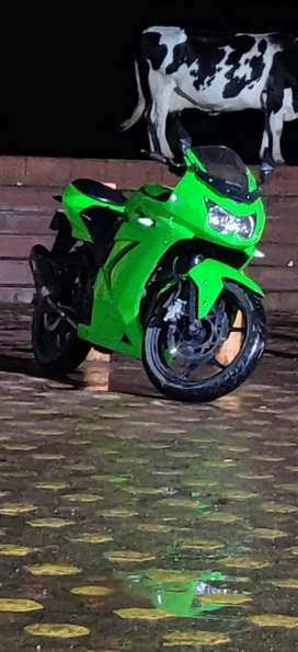 ninja 250 Green coloure