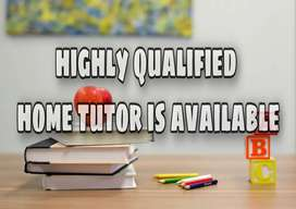 High qualified Home tutor with Reasonable package