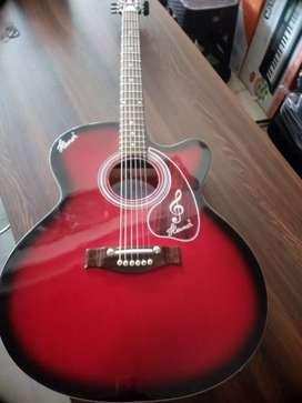 Hovner guitar new