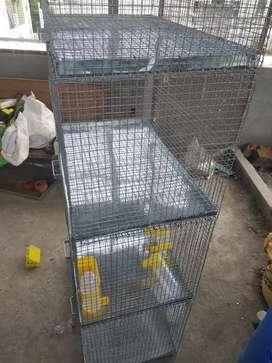 Cage banavi apvama avse