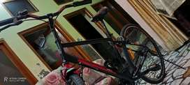 Raleigh Hybrid 700c .My Ride  Best of Britian Imported racing cycle