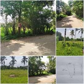 DIJUAL Tanah di Lialang Taktakan Serang Banten