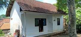 Rumah sederhana tenang dan aman tidak bising