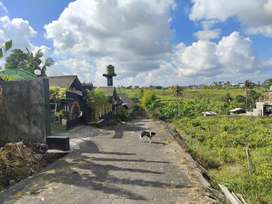 Tanah bonus villa joglo lokasi tiying tutul pererenan mengwi