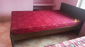 Engineered wood bed    Pack of 2    with curlon mattress