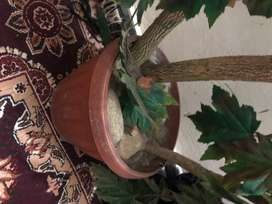 Artificial big plant for sale in Rawalpindi