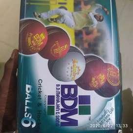 BDM 4Pcs cricket ball