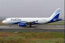 urgent hiring for indigo airlines -Indigo Airlines Job Opened for grou