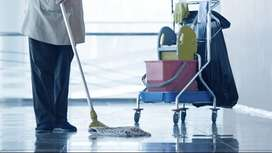 Cleaner Required (Safai Wala) Full time Job