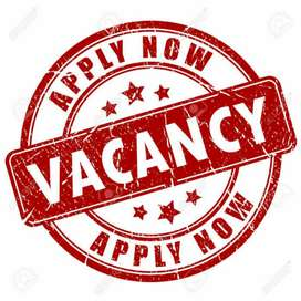 Need of Marketing executive both girl and boy can apply