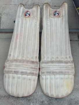 Cricket kit Bag and Pads