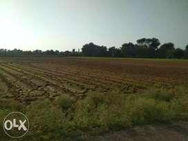 Farming type,@samarkha(Anand)