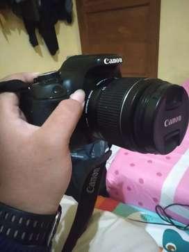 Canon 600D murah