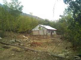 FARM HOUSE FOR RENT