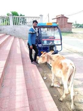 Electric e-Riksha..bus bettery problem hai